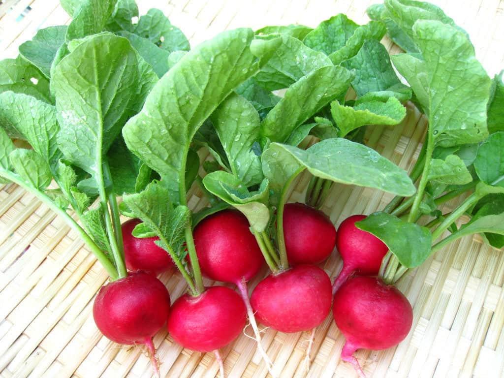 Một số thực phẩm giúp làm giảm các triệu chứng khó chịu của bệnh viêm xoang - Ảnh 4.