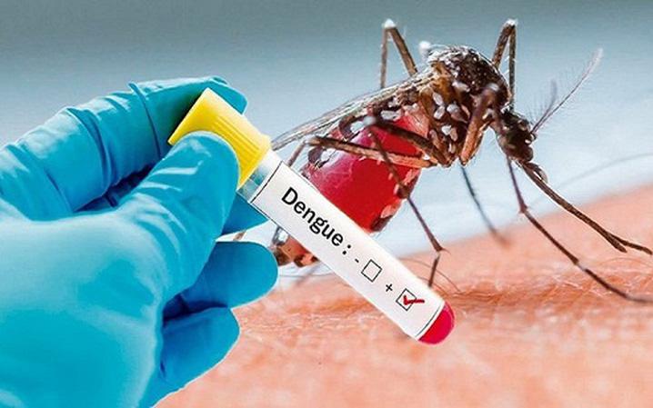 Số ca mắc sốt xuất huyết tăng nhanh, chuyên gia hướng dẫn cách phòng ngừa và điều trị tại nhà