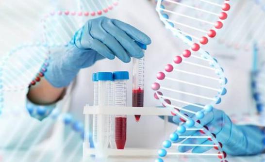 Bệnh ung thư có di truyền không? - Ảnh 2.