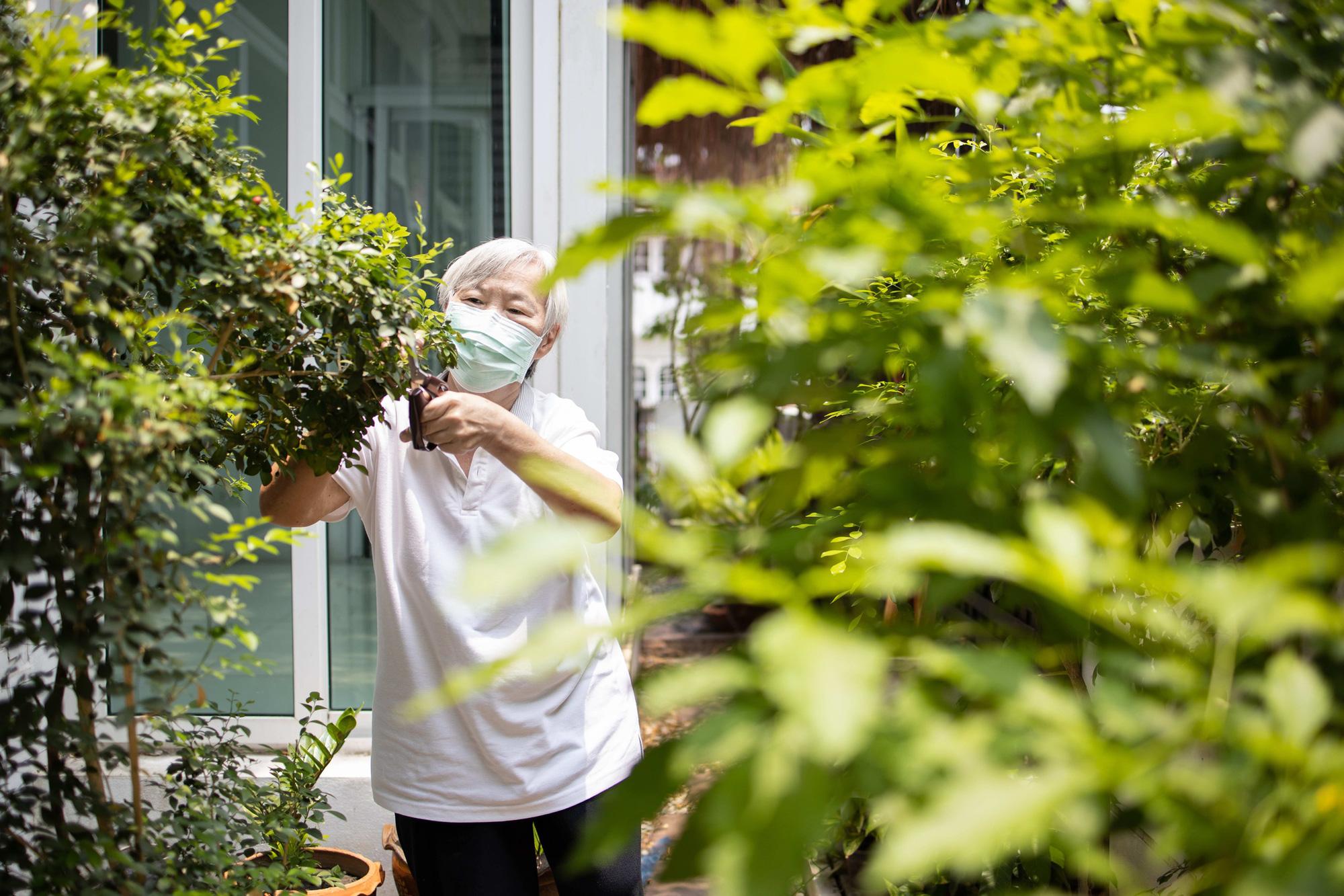 Chăm sóc người cao tuổi tại nhà trong dịch COVID-19 - Ảnh 1.