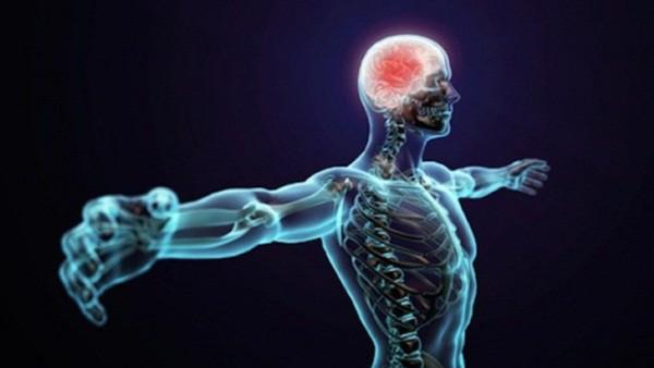 5 nguyên nhân gây ra bệnh tự miễn - Ảnh 1.