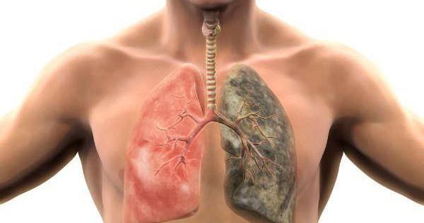 Tìm hiểu phương pháp cai thuốc lá tự nhiên an toàn và cực hiệu quả
