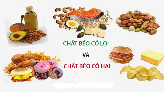Chất béo là gì? Nguồn gốc và giá trị dinh dưỡng của chất béo