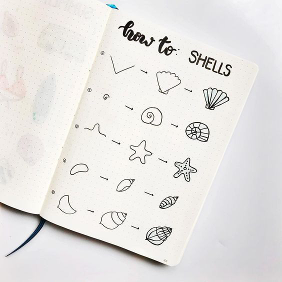 How-to-doodle-shells