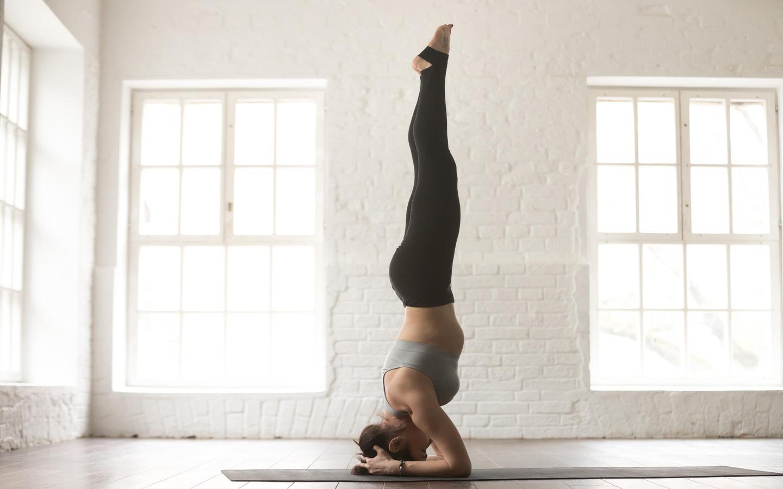 Hướng dẫn phòng ngừa cơn đau cổ tay và đau vai cho người mới tập yoga và 1001 lưu ý cần nhớ