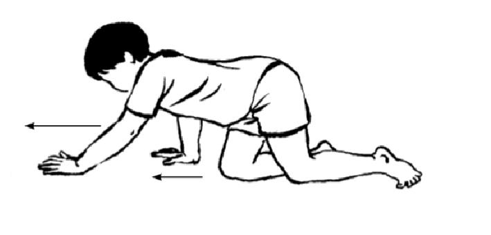 Các bài tập giúp phục hồi chức năng cho trẻ bị cong vẹo cột sống - Ảnh 5.