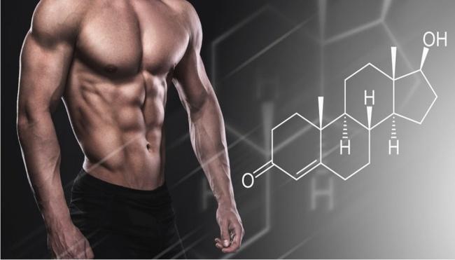 Testosterone là gì? Có tác dụng như thế nào đối với nam giới? - Ảnh 3.