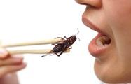 Ngộ độc do ăn côn trùng: bé trai 3 tuổi bị sốc phản vệ nguy kịch do ăn dế chiên giòn
