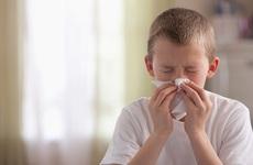 Cảm cúm, viêm phế quản là hai bệnh trẻ em vào mùa thu thường gặp nhất - nhưng chưa phải tất cả!