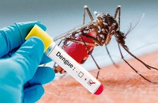 Nhận biết và phân biệt sớm sốt xuất huyết với sốt phát ban