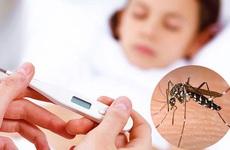Chuyên gia chỉ ra hai sai lầm đáng tiếc khi chẩn đoán và điều trị sốt xuất huyết trong mùa dịch Covid-19