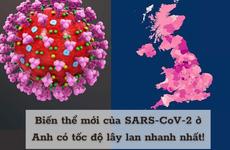 Tin mới từ WHO: Biến thể SARS-CoV-2 phát hiện đầu tiên tại Anh đã xuất hiện tại hơn 70 quốc gia