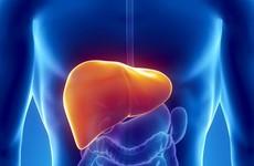 Khi nào cần điều trị viêm gan B?