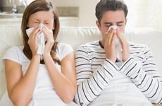 Viêm mũi dị ứng và viêm xoang có điểm nào giống và khác nhau?