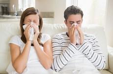 Những nguy cơ khiến viêm mũi dị ứng trở nên trầm trọng