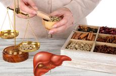 Những bài thuốc nam trị gan nhiễm mỡ hiệu quả