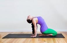 Hướng dẫn bài tập thoát vị đĩa đệm giảm đau cho hiệu quả lâu dài
