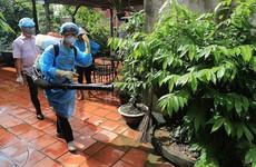 Phun hóa chất diệt muỗi tại nhà có độc không?
