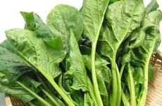 Canh cải bó xôi nấu tôm - món ăn rất tốt cho người bệnh ung thư tuyến giáp