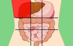 Đau bụng phải dưới xương sườn là bệnh gì?