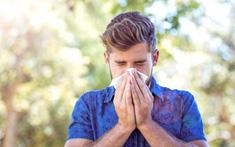 8 mẹo điều trị viêm mũi dị ứng do thời tiết tại nhà hiệu quả, dễ làm