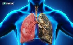 7 thói quen tốt cho phổi bạn nên làm hàng ngày