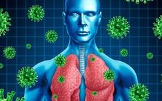 Các triệu chứng và tiến triển của bệnh viêm phổi do phế cầu khuẩn