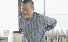 Đau lưng ở người già do nguyên nhân nào là chủ yếu?