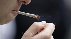 Giới chuyên gia khuyến cáo cai thuốc lá để phòng chống dịch COVID-19