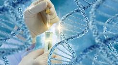 Khoảng 10% bệnh nhân mắc ung thư do di truyền, chuyên gia lý giải như thế nào?