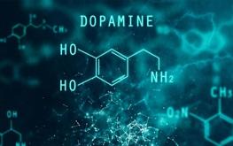 Dopamine là gì? Tìm hiểu về hormone hạnh phúc