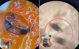 Hết mắm tôm tới tương ớt vỉa hè soi dưới kính hiển vi có dị vật, chuyên gia nói gì?