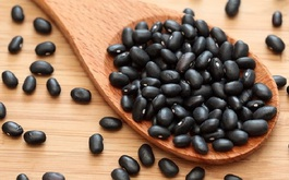 Công dụng của đậu đen có thể bạn chưa biết?