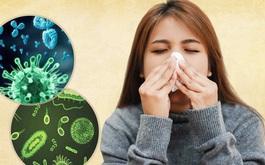 Viêm xoang nhiễm khuẩn và những điều cần biết