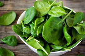 Rau bina là rau gì? Những lợi ích tuyệt vời của loại rau bina không phải ai cũng biết