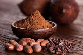 Các nhà nghiên cứu khẳng định tác dụng tuyệt vời của cacao tới não bộ
