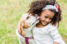 Lây nhiễm giun sán từ thú cưng, cần làm gì để phòng tránh?