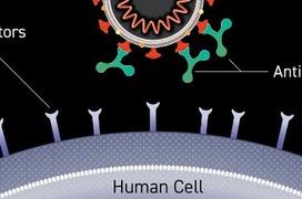 Tiêm vaccine vẫn nhiễm virus SARS-CoV-2  – Hiểu thế nào cho đúng?
