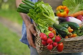 8 loại rau củ quả có công dụng tuyệt vời để phòng bệnh đường hô hấp