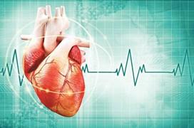 Tổng quan về hạ kali máu - căn bệnh có thể cướp đi sinh mạng chỉ trong vài giây