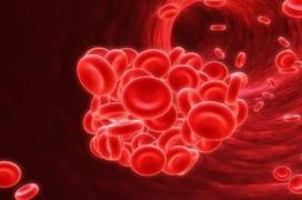 Những bệnh phổ biến có liên quan đến máu nhiễm mỡ