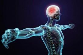 5 nguyên nhân gây ra bệnh tự miễn