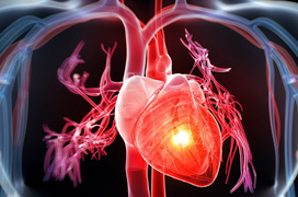 Phòng ngừa thiếu máu cơ tim để bảo vệ tính mạng của mình