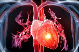 Triệu chứng của bệnh u trong tim có thể bạn chưa biết