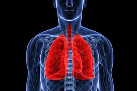 Các phương pháp kiểm tra chức năng phổi tại nhà đơn giản và hiệu quả