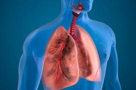 Các phương pháp xét nghiệm kiểm tra chức năng phổi phổ biến nhất hiện nay