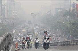 Ô nhiễm môi trường là nguyên nhân gây viêm phế quản hàng đầu