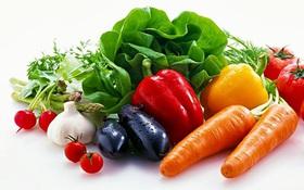 Nguyên tắc dinh dưỡng cho người viêm xoang giúp người bệnh nhanh khỏi