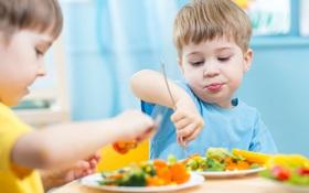 Mùa thu trẻ nên ăn gì? Đâu là thực phẩm chứa nhiều dinh dưỡng cần bổ sung cho bé?