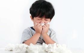 Nguy cơ dị ứng ở trẻ nhỏ khi giao mùa hè thu